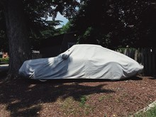 A Covered Car Under The Shadows Of A Tree
