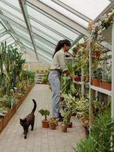Woman With Cat Working In Hothouse