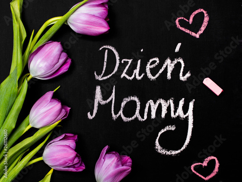 Fototapeta Mother's day composition. A bouquet of tulips and Polish sentence MOTHER'S DAY written in chalk on a chalkboard obraz