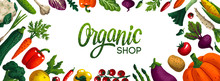 Wide Horizontal Organic Shop Background. Copy Space. Variety Of Decorative Vegetables With Grain Texture On White Background. Farmers Market, Organic Food Poster, Cover Or Banner Design. Vector.