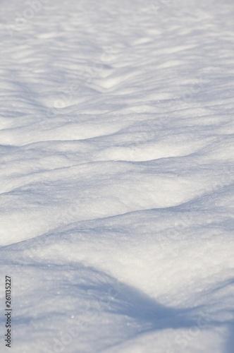 Fototapeta 新雪つもる朝