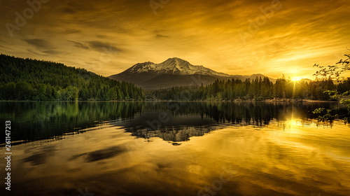 Poster Miel Mt. Shasta Morning