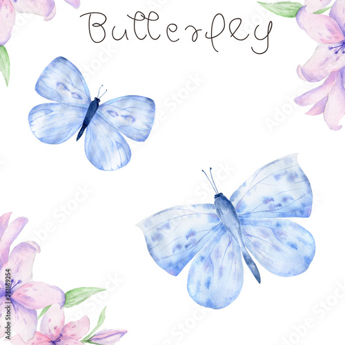 Türaufkleber Wasser Watercolor blue butterfly , isolated on white background