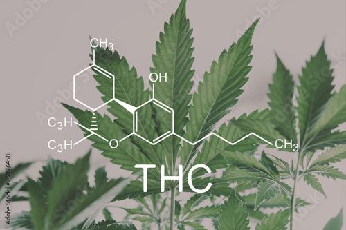 Photo  THC formula, Tetrahydrocannabinol