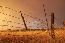 An Old, Broken Fence In A Field Of Dead Grass Under A Cloudy Sky After A Storm.