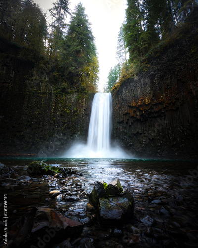 Photo Stands Forest river Oregon Waterfall