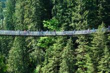 Capilano Suspension Bridge, No...