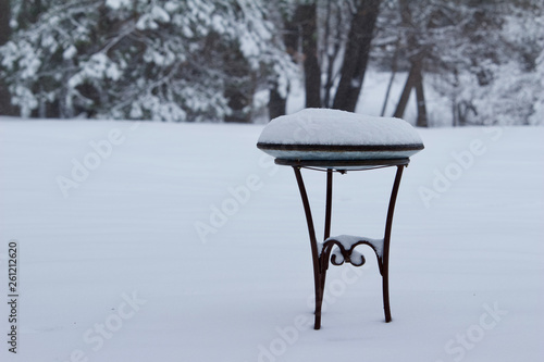 Metal birdbath covered in snow during a snow storm Wallpaper Mural