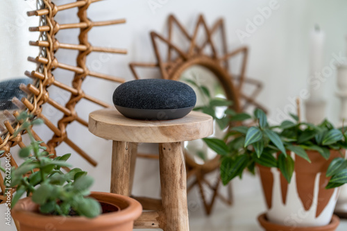 VIENNA,AUSTRIA - April 4 : Google Home Mini on a wooden table with green plants in the background - 261220406