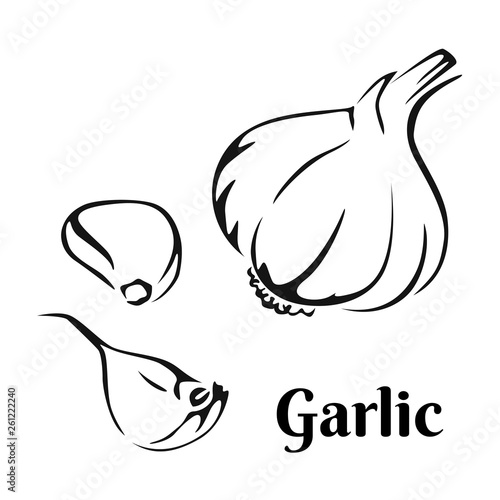 Garlic Black and white image Wallpaper Mural