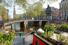 Historic Buildings Along Prinsengracht Canal With Westerkerk Church Clock Tower In The Background And Colorful Flowers And Plants On A Houseboat In The Foreground, Amsterdam, Netherlands