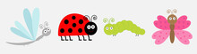 Insect Icon Set Line. Ladybug, Dragonfly, Butterfly And Caterpillar. Cute Cartoon Kawaii Funny Character. Flat Design. White Background. Isolated.