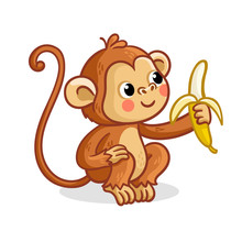 The Monkey On A White Backgrou...