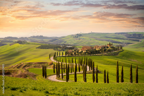 Obraz na plátně  Tuscan hill with row of cypress trees and farmhouses at sunset