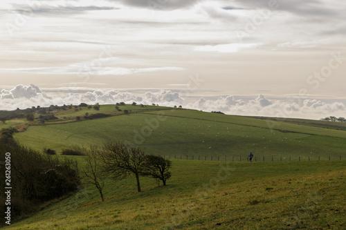 Montage in der Fensternische Afrika Pradera verde con nubes en el cielo