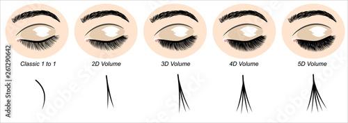 Fototapeta Eyes with extended artificial eyelashes