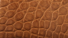 Light Tan Crocodile Leather Texture Background