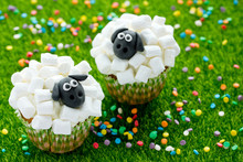 Easter Sheep Cupcakes , Funny ...
