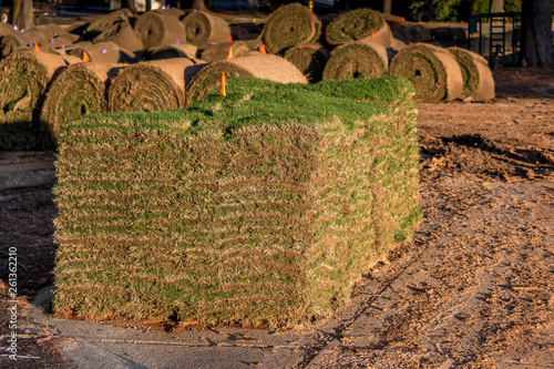 Fresh sod grass squares stacked on pallet ready for