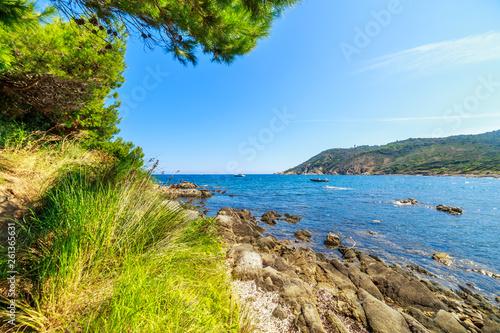 Garden Poster Scandinavia Landscape of typical landscape of Cote D'Azure, France