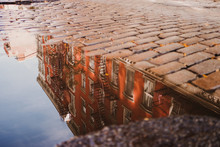 Puddle Reflecting Buildings, New York, USA