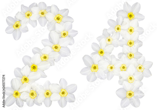 Wall Murals Plumeria Numeral 24, twenty four, from natural white flowers of Daffodil (narcissus), isolated on white background