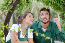 Gardening Couple Inspecting Pl...