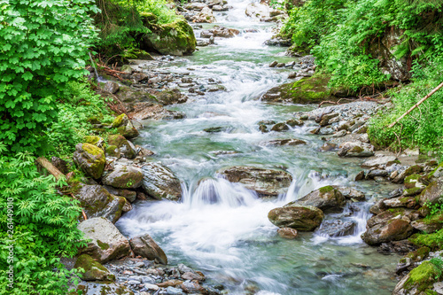 Forest mountain river running over rocks Wallpaper Mural