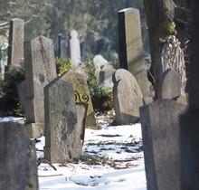 Zentralfriedhof  Central Cemetery Jewish Section Winter Vienna