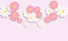 Buds Of Daisies On A Pink Background