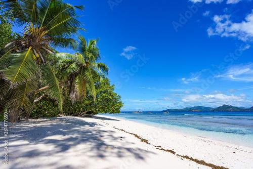 Printed kitchen splashbacks Zanzibar Palm trees, white sand and turquoise water at the beach of anse severe, la digue, seychelles 1