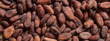 Cocoa Beans Full Frame Backgro...