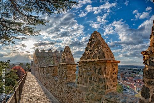 Fotografering  avila town spain old walls