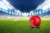 Fototapeta sport - Cricket stadium with ball in lights and flashes 3d render