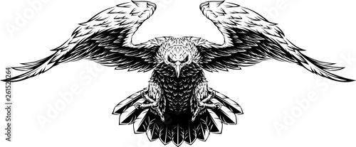 Flying big eagle Canvas Print