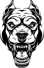 Ferocious Pitbull Dog Head