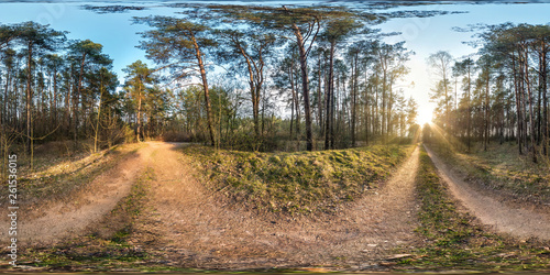 Foto op Canvas Weg in bos full spherical hdri panorama 360 degrees angle view on gravel pedestrian footpath and bicycle lane path in pinery forest in sunny spring evening in equirectangular projection. VR AR content