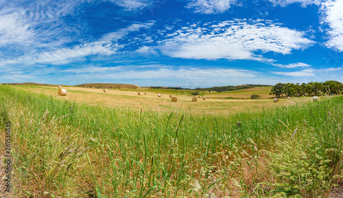 Foto  Panorama landscape of countryside rural fields with round straw bales