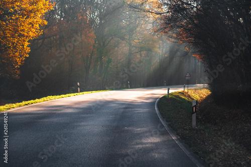 Obraz na plátně  Straße im Herbst