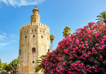 Tower Of Gold (Torre Del Oro) ...