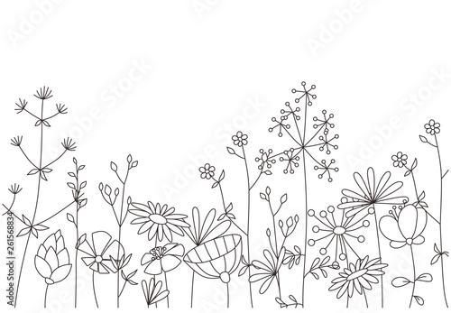Fototapeta Floral template. Decorative botanical illustration in vector obraz
