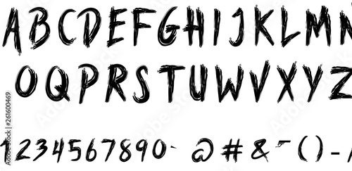 Valokuva  Calligraphic Vintage Handwritten vector Font for Lettering