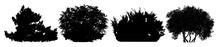 Bush Silhouette Vector Set