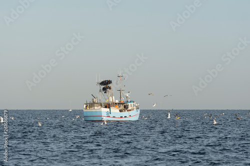 Fotografie, Obraz  Fishing boat surrounded by seagulls