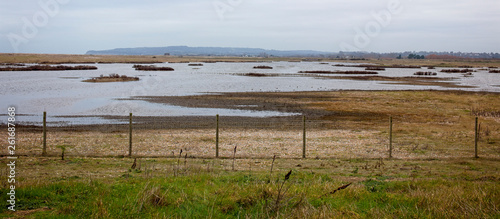 rye harbour nature reserve rye east sussex