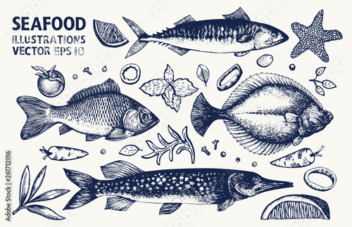 Canvas-taulu Fishes and spices vector set