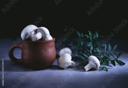 Fotografie, Obraz  champignon mushrooms in an old clay pot on a table in a dark