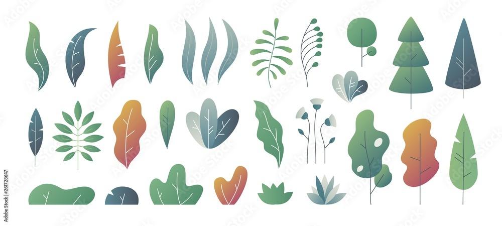 Fototapeta Flat minimal leaves. Fantasy colors gradation, leaves bushes and trees design templates, nature gradient plants. Vector cute autumn leaves