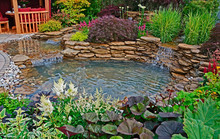 The Pond Area In An Aquatic Garden With Planted Rockery And Waterfalls And Summer House