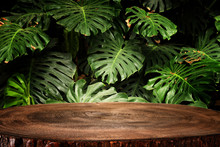 Wooden Table In Front Of Tropical Green Monstera Leaves Floral Background. For Product Display And Presentation.